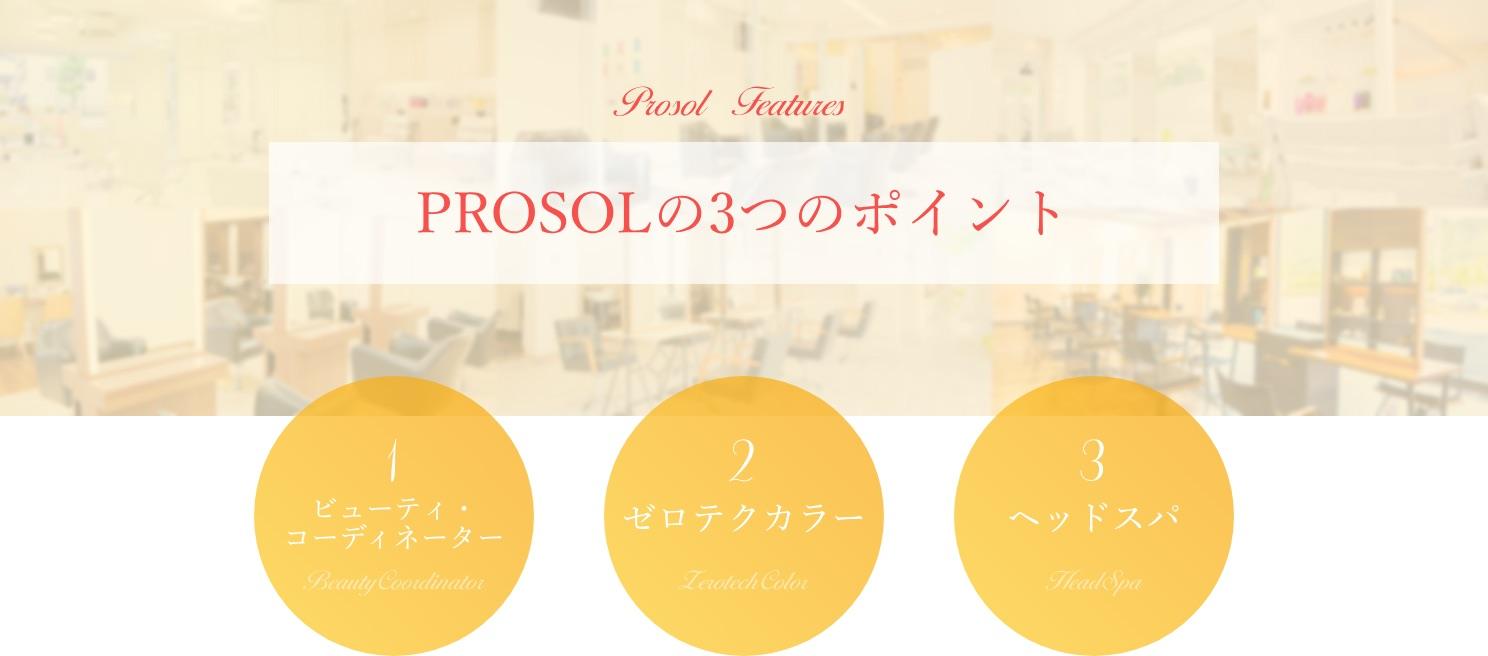 PROSOLの3つのポイント